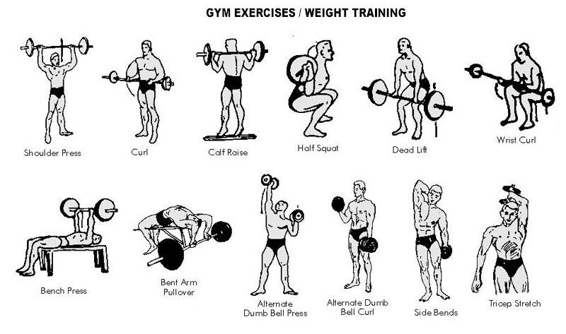 Best Weight Lifting Training Exercises Fitbiz In Fitness Sports Wellness In India