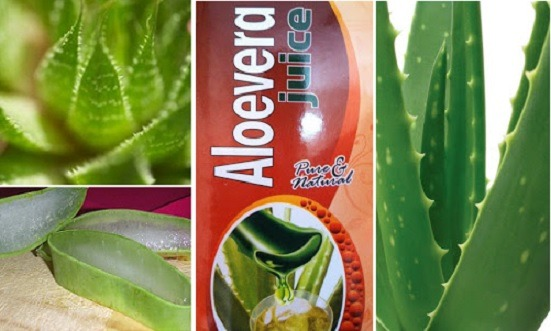 The Health Benefits Of Aloe Vera Fitbiz In Fitness